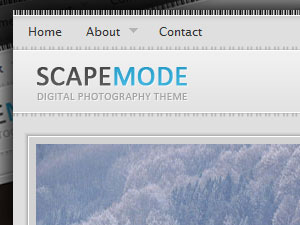 ScapeMode Premium Photography Wordpress Theme
